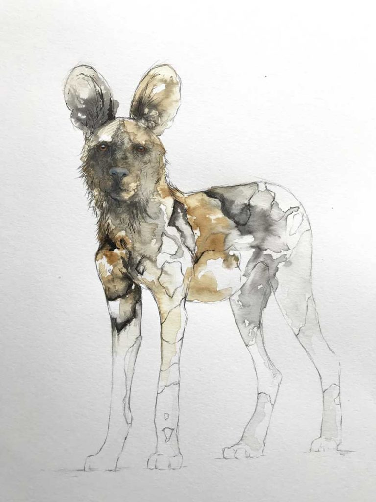 Buy this original Painted Dog by Stephen Rew to raise funds for conservation