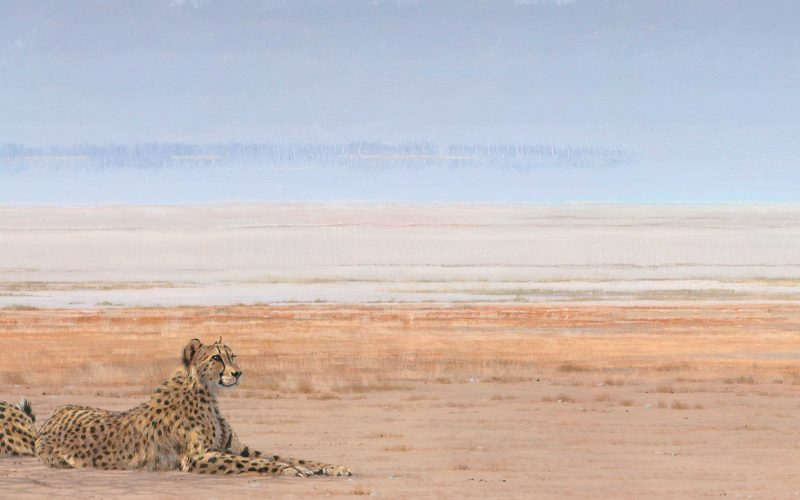 paul dixon painting of etosha