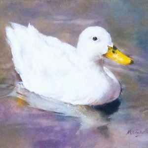 Oil painting of a white duck with yellow beak by Mandy Shepherd