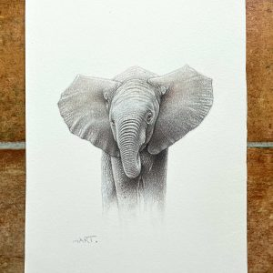 Buy this baby elephant by Martin Aveling in aid of conservation