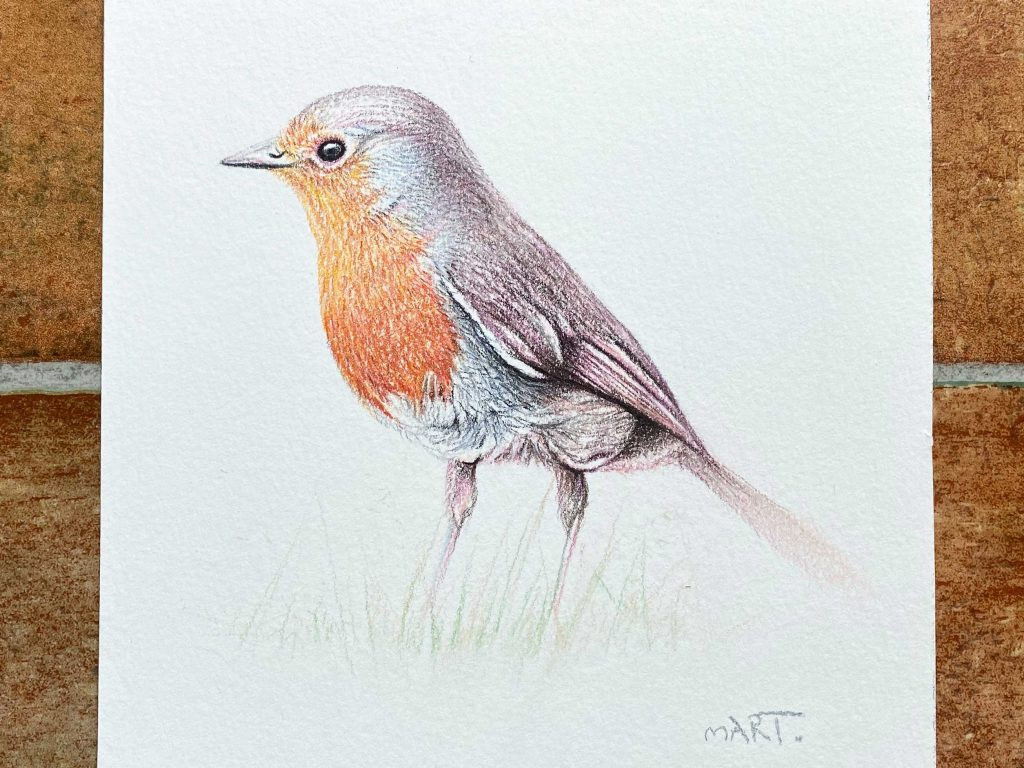 Buy this robin by Martin Aveling in aid of conservation