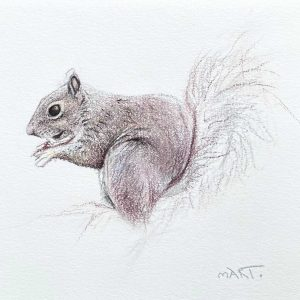 Buy this squirrel by Martin Aveling in aid of conservation