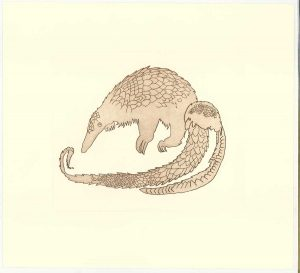 Buy this print by Jack in aid of conservation