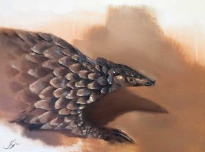 Buy this painting by Joni-Leigh in aid of conservation