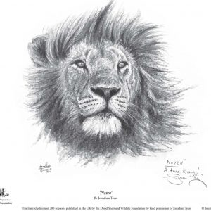 Buy this print by Jonathan in aid of conservation