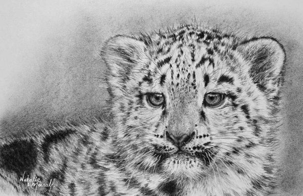 Buy this original by Natalie in aid of conservation