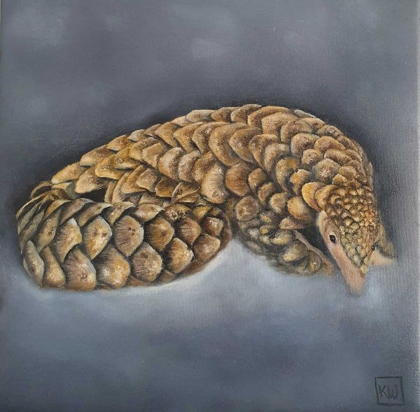 Buy this original by Kelly in aid of conservation