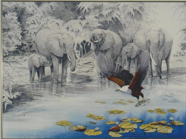 Buy this original by Ruth in aid of conservation