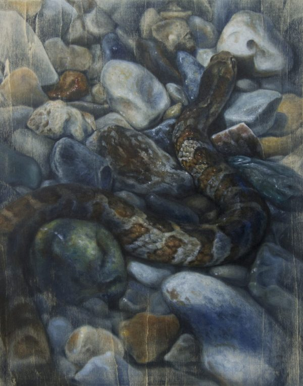 Painting by Adrianna Allen titled Shoreline Slither