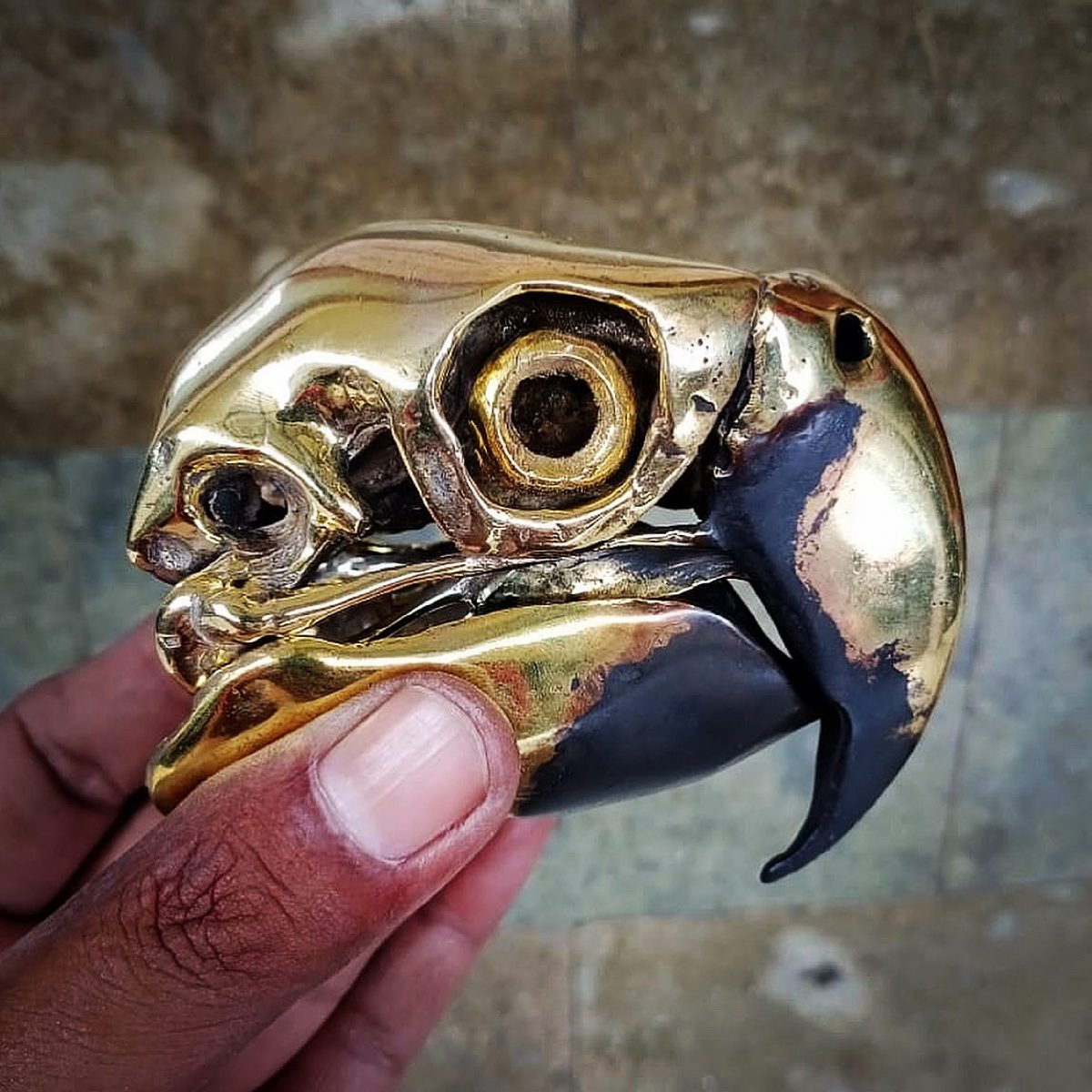 Brass and Recycled Copper parrot skull sculpture by Alexandre Leblanc