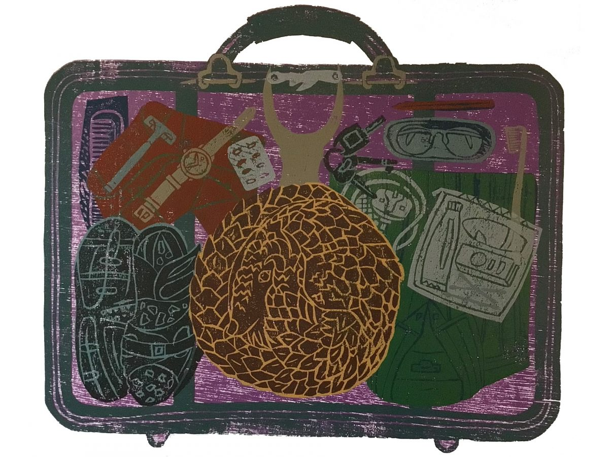 Pangolin in a briefcase artwork by Andrew Harris