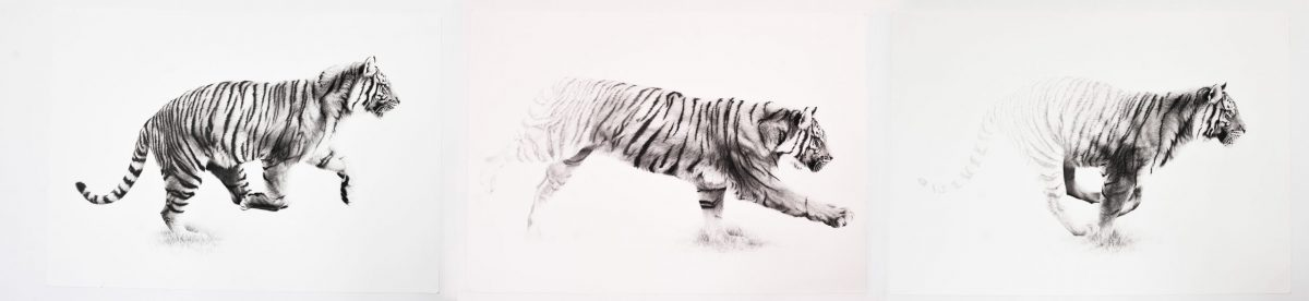 Artwork by Cole Stirling titled Running Towards Extinction