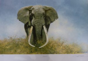 David Shepherd Original Painting titles Ahmed A Very Wise Old Elephant