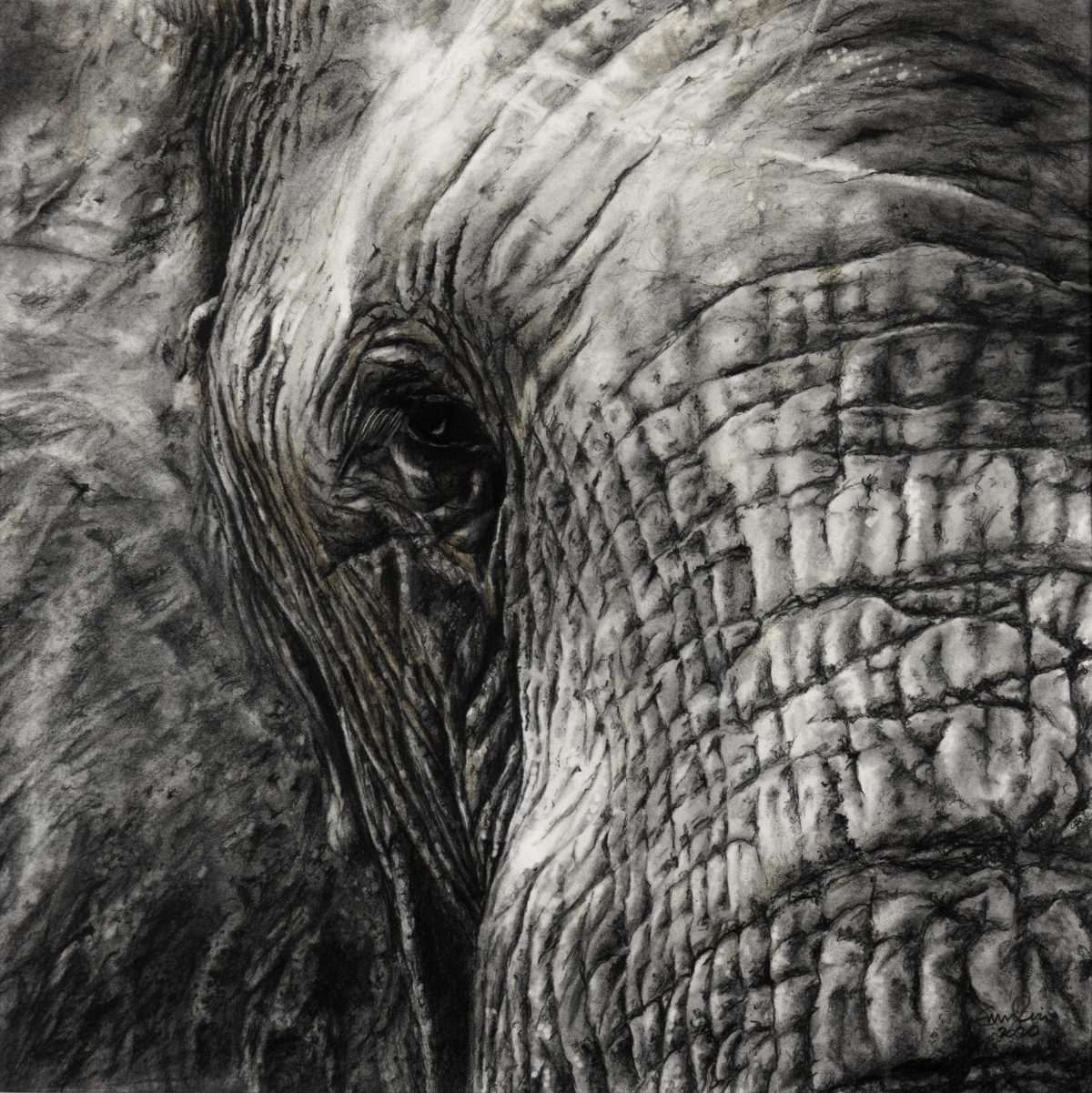 Painting of a close up elephant by Emma Price
