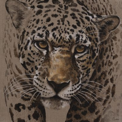 A painting of a leopard by Florence Cadene