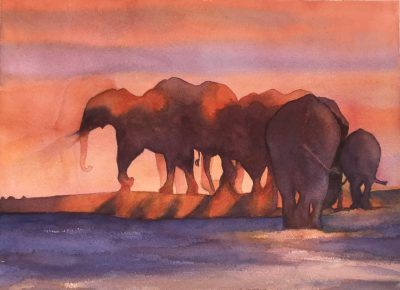 A watercolour painting of elephants at sunset