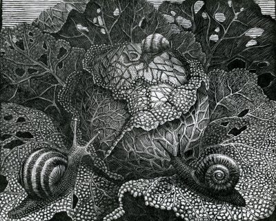A resin engraving of snails on a cabbage
