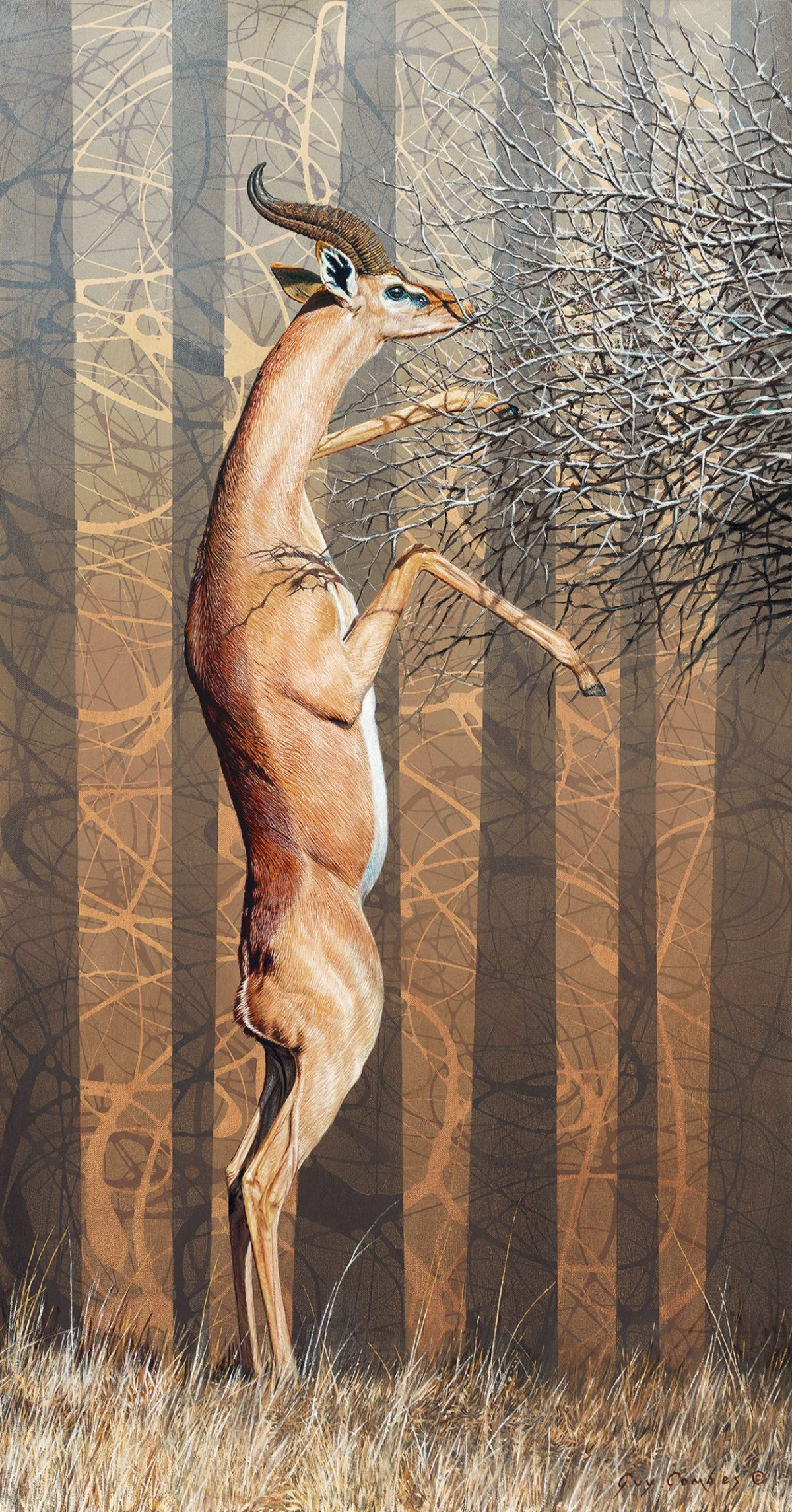 An oil and acrylic painting on canvas of a gerenuk