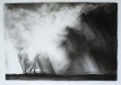A charcoal drawing of zebra disappearing in a dust storm