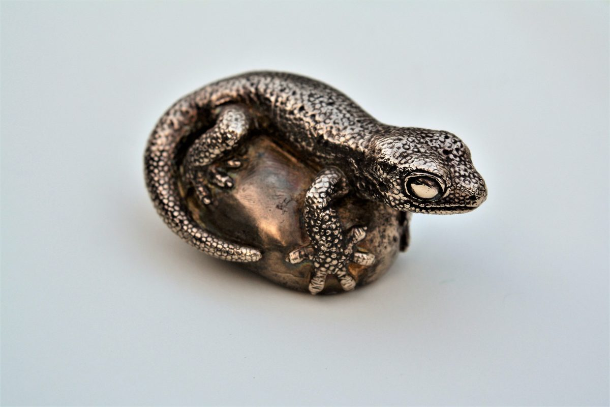 Duvacels Gecko by Hester Odgers