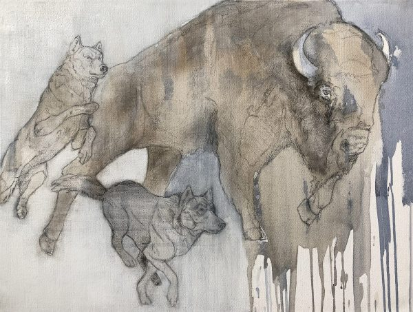 acrylic and graphite painting of american species