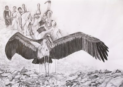 A pencil drawing of an Asian Stork.