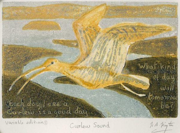 A postcard size painting of a curlew in flight