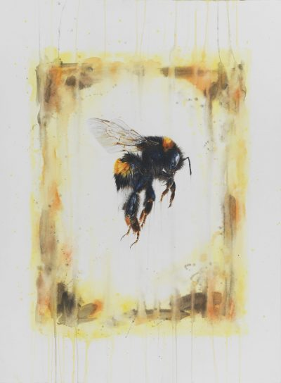 Painitng by Penel Kirk titled Flight of the Bumblebee
