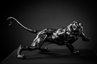 Black Panther by Stephane Deguilhen