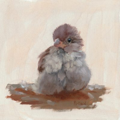 A painting by Susan Gillespie of a sparrow taking a bath