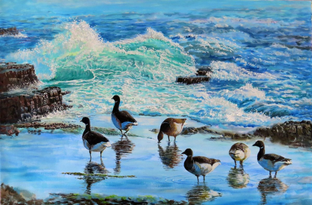 Painting by Tomas O'Maoldomhnaigh called Wild Atlantic Winter, Brent Geese