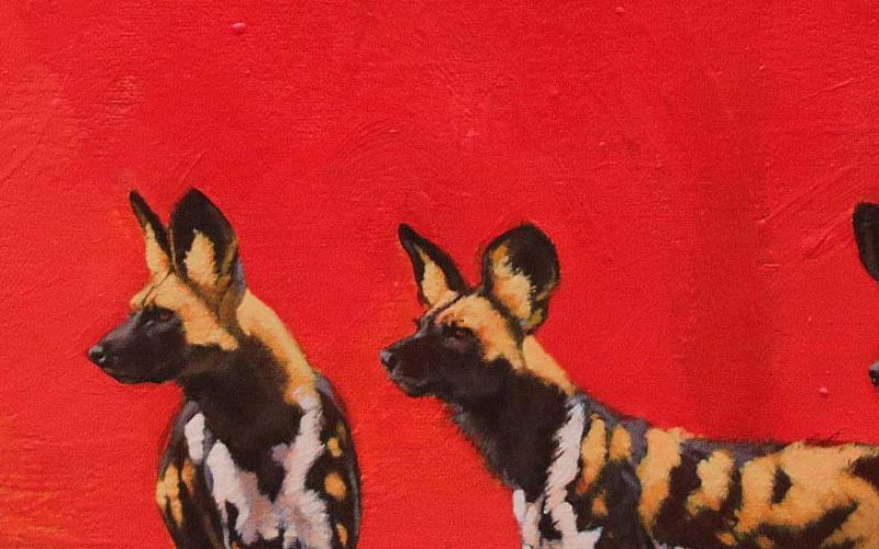 painting of painted dogs