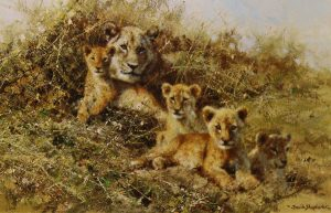 Buy this print by David is aid of conservation